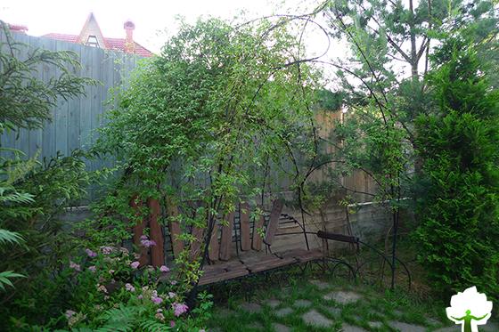 Садовая скамья завитая диким клематисом